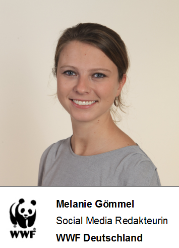 Melanie Gömmel, Social Media Redakteurin beim WWF Deutschland